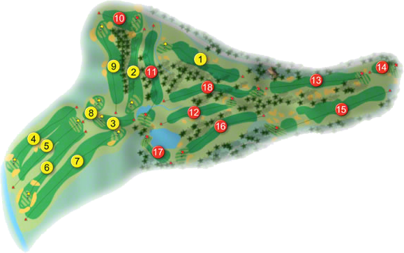 Naas Golf Course Layout